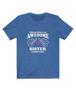 Awesome Sister Looks Like T-Shirt